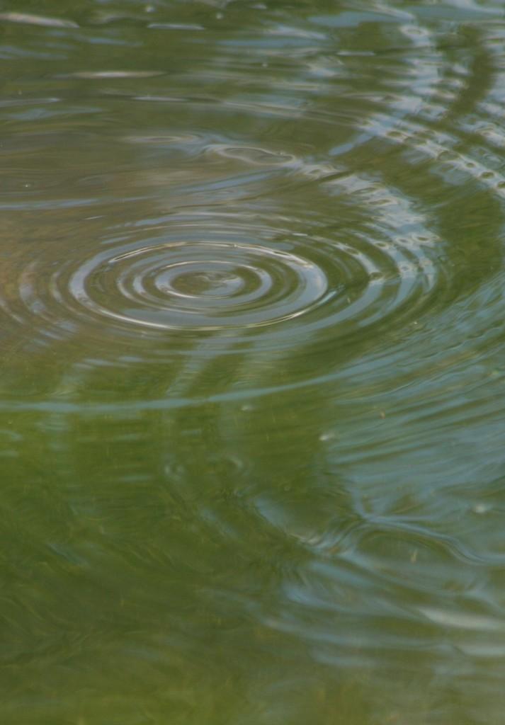 vand praktik